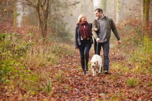 Your Marley & Me Package - special offers at the Belle Isle Estate